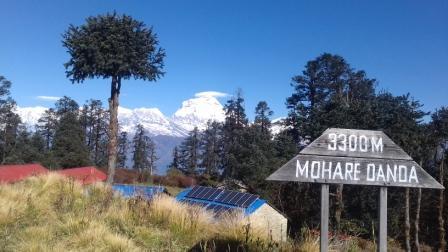 Mohare Dada Trekking